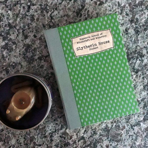 Caderno Estudante Sonserina
